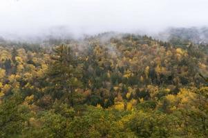 monólogo de outono foto