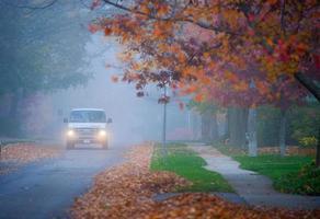 névoa de outono toronto