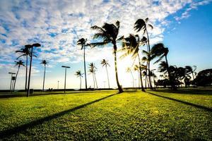 pôr do sol tropical