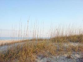 praia de ponte vedra, flórida (jacksonville)