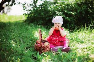 bebê. foto
