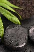folha verde na pedra spa na superfície preta molhada foto