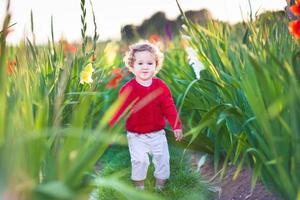 linda menina andando em um campo de gladíolo ao pôr do sol foto