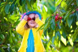 menina bonitinha escolhendo cereja fresca em uma fazenda foto