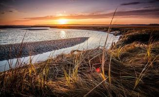pôr do sol sobre o pântano foto