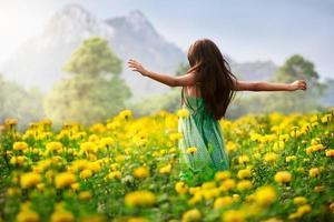 campos de flores foto