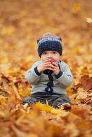 bebezinho no parque outono foto