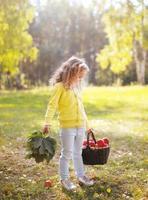 criança segurando cesta com maçãs andando na floresta de outono