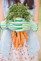 mulher segurando suas cenouras orgânicas foto