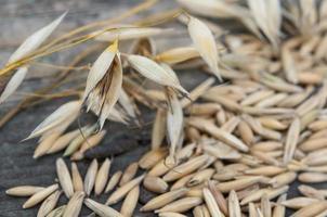 grãos de aveia close-up foto