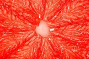 toranja rosa close-up foto