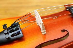 close-up de violino foto