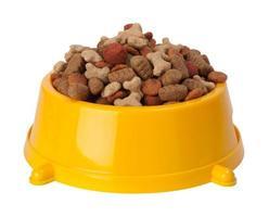 comida seca para cães foto
