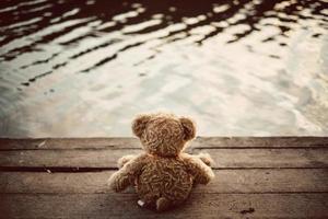urso Teddy foto