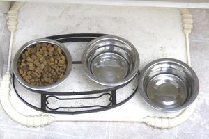 comida de cachorro e tigelas de água foto