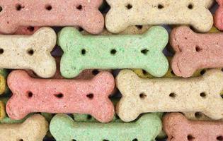 linhas de biscoitos para cães foto