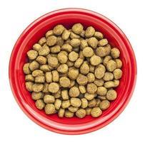 tigela de comida de cachorro seco foto