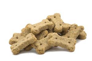 biscoitos de cachorro foto