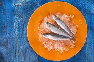 anchovas frescas em uma cama de gelo foto