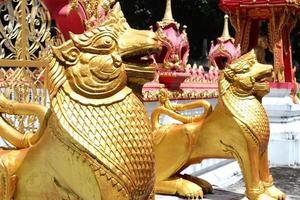 leões dourados do templo tailandês foto