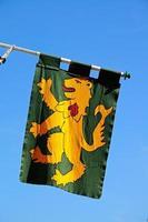 bandeira medieval de leão desenfreado. foto