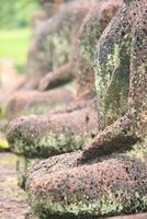 estátua antiga de buda, pacífica foto