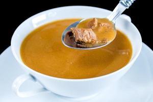 Sopa de pato foto
