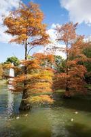 parque del retiro no outono de madrid foto