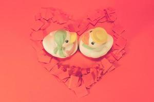 patos de cerâmicos brancos com o conceito de casal adorável. foto