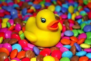 smarties duck! foto