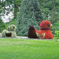 canteiro de flores em figuras patos
