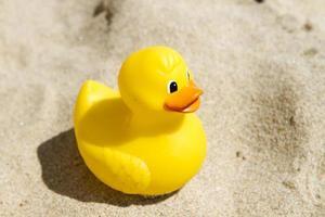 pato de brinquedo foto