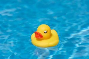 natação de pato de borracha foto