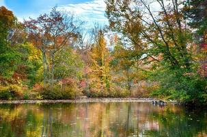 outono na lagoa de th foto