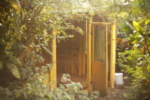 galinheiro amarelo foto
