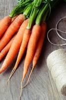 cenoura foto