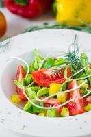salada fresca de primavera. foto