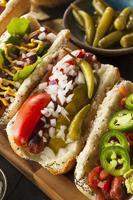 gourmet grelhado todos os cães hots carne foto