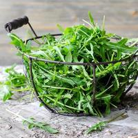 rúcula para salada verde fresca foto