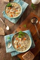 arroz selvagem caseiro e sopa de galinha