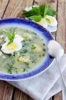 sopa de beterraba verde com urtigas foto