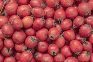 frutos maduros de espinheiro foto