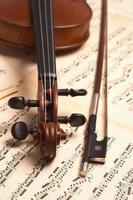 cabeça de violino foto