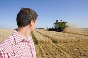 agricultor, olhando para o campo de cevada foto