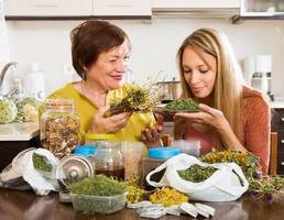 mulheres com ervas medicinais foto