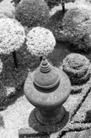 vaso de flores foto