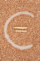 símbolo do euro feito de grãos de trigo foto