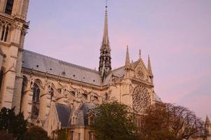 Notre Dame ao entardecer foto