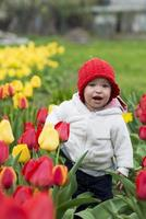 menina adorável criança reunindo tulipas foto