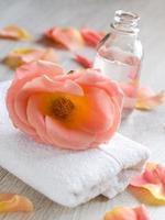 conjunto de spa e aromaterapia foto